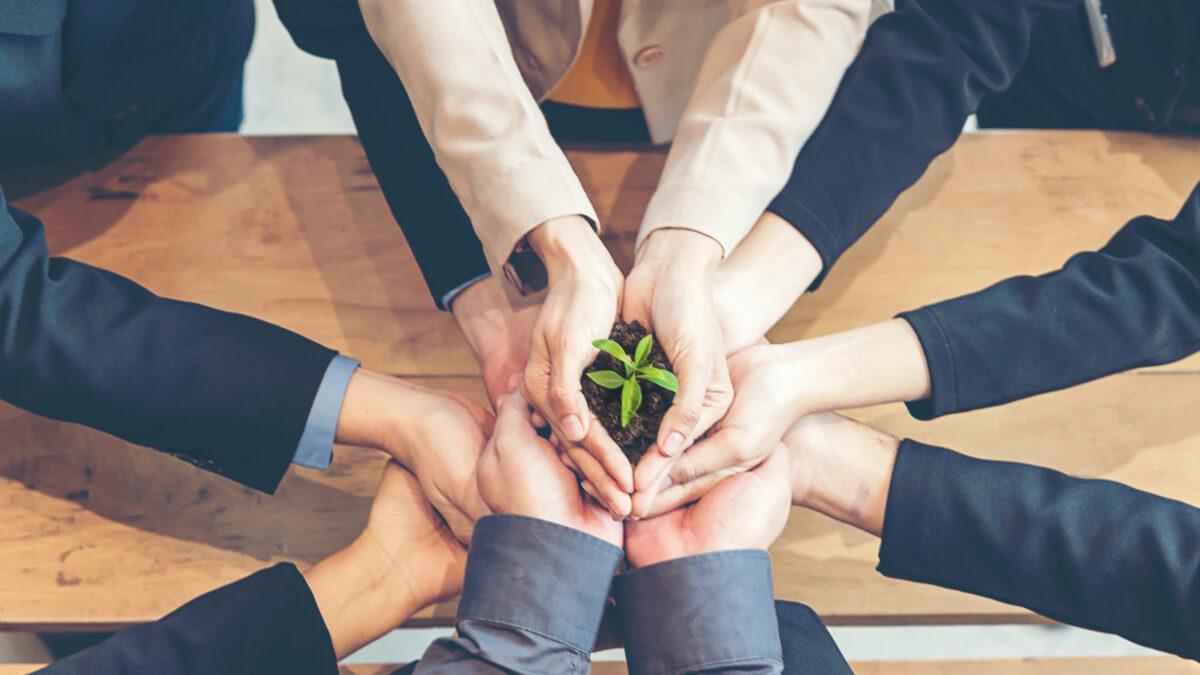 Cursos para quem quer trabalhar com sustentabilidade